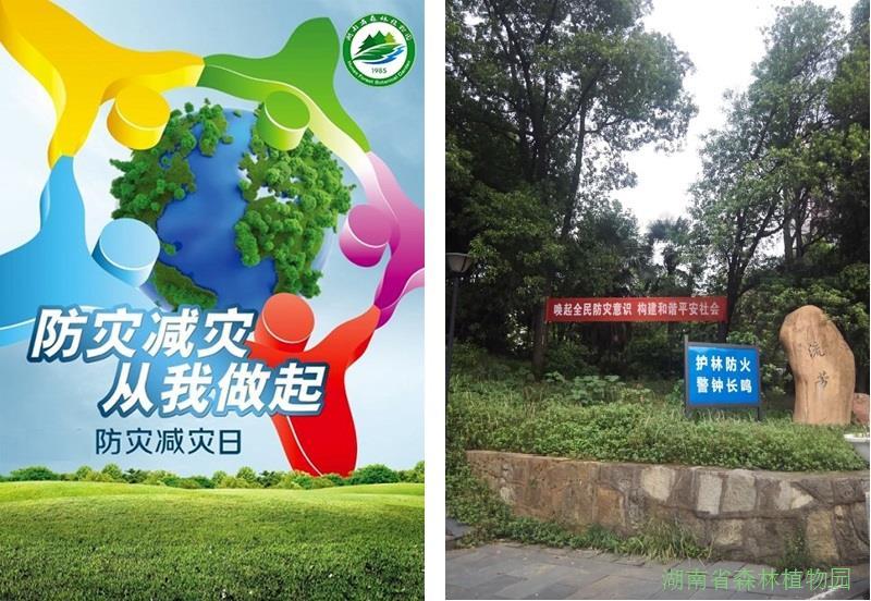 幼儿园开园典礼横幅标语